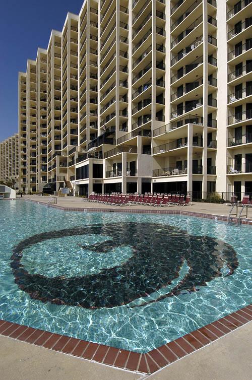 Phoenix VII pool